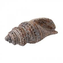 Dimond 159-002 - Decorative Wooden Conch Shell